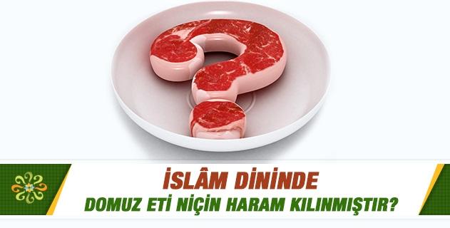 Domuz eti niçin haram kılınmıştır?