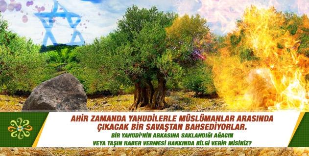 Ahir zamanda Yahudilerle Müslümanlar arasında çıkacak bir savaştan bahsediyorlar. Bir Yahudi'nin arkasına saklandığı ağacın veya taşın haber vermesi hakkında bilgi verir misiniz?