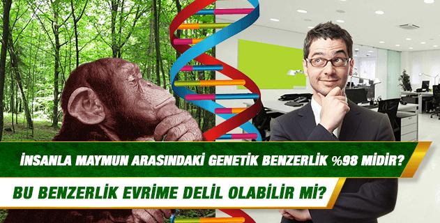 İnsanla maymun arasındaki genetik benzerlik %98 midir? Bu benzerlik evrime delil olabilir mi?