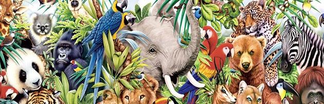 Bazı canlıların anormal yaratılışının hikmeti nedir?