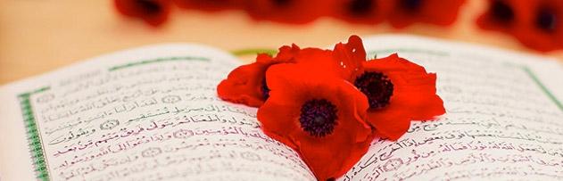 İslam'ın dirilişine bir Müslüman nasıl katkıda bulunabilir?