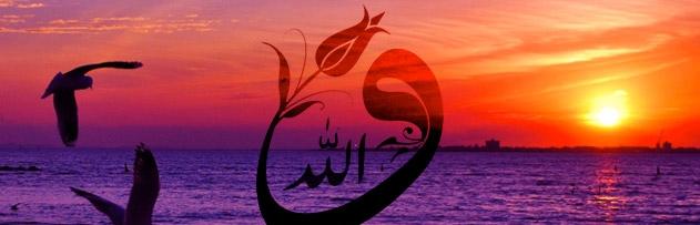 Allah cevabını bildiği halde neden soru soruyor?