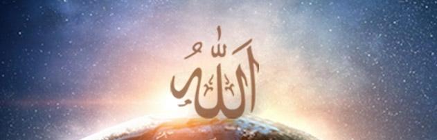 Allah dilediğine gaybı bildirir mi, ayetlerle delil gösterir misiniz?
