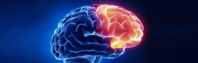 Beyinde Tanrı noktası var mı?